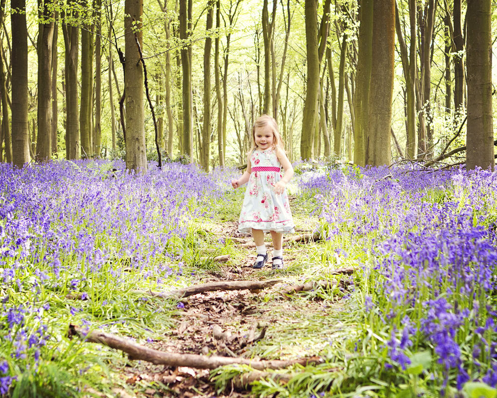 family photos bluebells hampshire